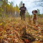 4 Σεπτεμβρίου το πρώτο γκρουπ για κυνήγι μπεκάτσας στη Ρωσία