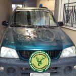 Μήνυση για λαθροθηρία αγριόχοιρων με συρμάτινες θηλιές