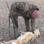 Κυνήγι λύκου στο Κιργιστάν....VIDEO