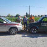 Απελευθέρωση λαγών από τον ΚΣ Αιγινίου