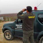 Συμμετοχή της Ομοσπονδιακής Θηροφυλακής σε  περίπολα δασοπροστασίας