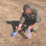 Άγνωστοι σκότωσαν με δολώματα τρία κυνηγόσκυλα στην περιοχή της Πτολεμαϊδας