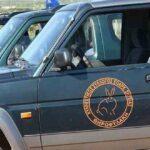 Δηλητηριάστηκαν δυο κυνηγετικά σκυλιά στην Σητεία