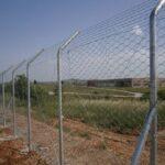 Περίφραξη 11 χιλιομέτρων για τους αγριόχοιρους στη Θεσσαλονίκη