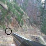 Εξαιρετικά στιγμιότυπα από κυνήγι λαγού...VIDEO