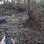 Εντυπωσιακή συλλογή από τουφεκιές σε κυνήγια αγριόχοιρου....VIDEO