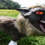 Ιαπωνία: Λύκος ρομπότ προστατεύει τα χωράφια από αγριογούρουνα...VIDEO