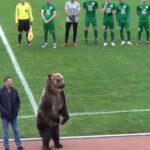 Αρκούδα «οργάνωσε» κερκίδα σε αγώνα στη Ρωσία!...VIDEO