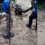 Επίθεση ανακόντα σε σκύλο....VIDEO
