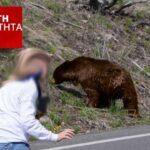 Επίθεση αρκούδας σε γυναίκα στην Καστοριά....ΗΧΗΤΙΚΟ