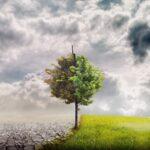 """Αν. ΥΠΕΝ, Σ. Φάμελλος: """"Δεν χωρά εφησυχασμός της Ευρώπης στη μάχη κατά της κλιματικής αλλαγής"""""""
