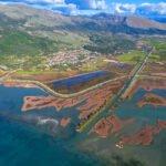 Μεγάλη επιτυχία της Ε' Κυνηγετικής Ομοσπονδίας Ηπείρου : ΑΝΑΚΑΛΕΙΤΑΙ η απαγόρευση στον υγρότοπο της Σαγιάδας