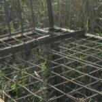 Συνελήφθη ένα άτομο που είχε βάλει παγίδα μέσα στο Εθνικό Πάρκο της Κερκίνης