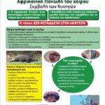 Η συμβολή των κυνηγών στην αφρικάνικη πανώλη των χοίρων