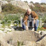 Κρήτη: Έψαχνε λαγούς και βρήκε αρχαίο ελαιοτριβείο