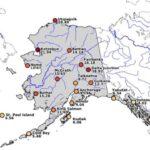 Απίστευτος καύσωνας στην Αλάσκα σκοτώνει ζώα και ανθρώπους