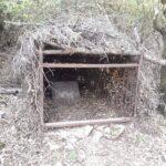 Παγίδα για αγριόχοιρους κατάσχεσαν θηροφύλακες της Δ' ΚΟΣΕ