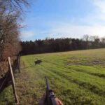 Εντυπωσιακή συλλογή από τουφεκιές με κάμερα μεγάλης ανάλυσης σε γουρουνοκυνήγια ....VIDEO