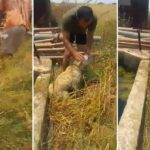 Κύπριος κυνηγός  διέσωσε εγκαταλελειμμένο σκύλο σε δεξαμενή...VIDEO