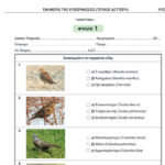 Εξετάσεις νέων κυνηγών από τον ΚΣ Κιλκίς