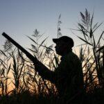 Χάνεται το κυνήγι στην Κύπρο