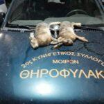 Επεισοδιακή καταδίωξη λαθροθήρων στην Κρήτη