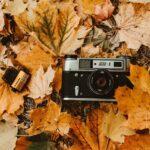 Δ΄ΚΟΣΕ : Διαγωνισμός κυνηγετικής φωτογραφίας....VIDEO