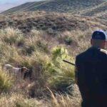 Κυνήγια πέρδικας στο Μαρόκο...VIDEO