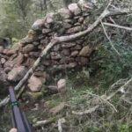 Τουφεκιά σε κυνήγι αγριόχοιρου στην Ιταλία....VIDEO