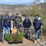 Εθελοντική αναδάσωση στο όρος Ίσμαρος Ροδόπης