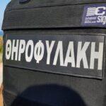 Πρόστιμο 500 ΕΥΡΩ για μηχανάκι τσίχλας