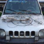 Σύλληψη για λαθροθηρία αγριόχοιρων με θηλιές στην Χαλκιδική
