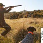 Το κυνήγι εν μέσω κορωνοϊού….VIDEO
