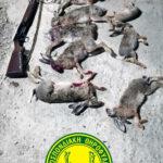 Συλλήψεις στο Σκούρβουλα, Δήμου Φαιστού για παράνομη θήρα λαγού