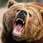 Συνέντευξη του κυνηγού που πάλεψε με την αρκούδα....VIDEO